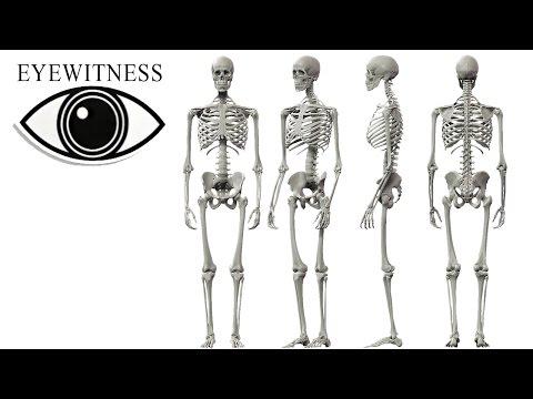 EYEWITNESS | The Skeleton | S1E13