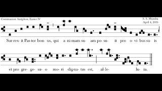 Surrexit Pastor Bonus, Communion Antiphon, S. S. Mundra