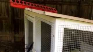 Homemade Rabbit Hutch Update 3