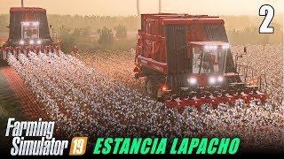 Cotton | Farming Simulator 19 MP | Estancia Lapacho - Ep 2