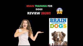 Brain Training For Dogs Review 2020 - Pros and Cons 🔥