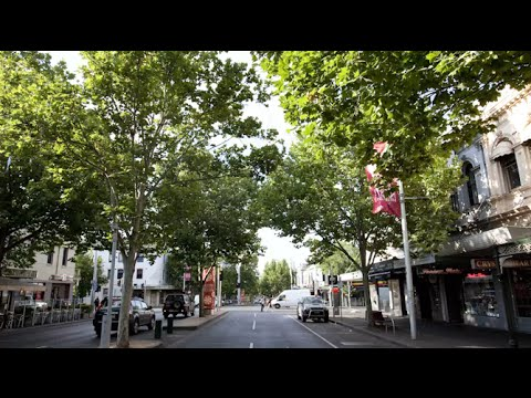 Melbourne City Council Urban Forrest Strategy