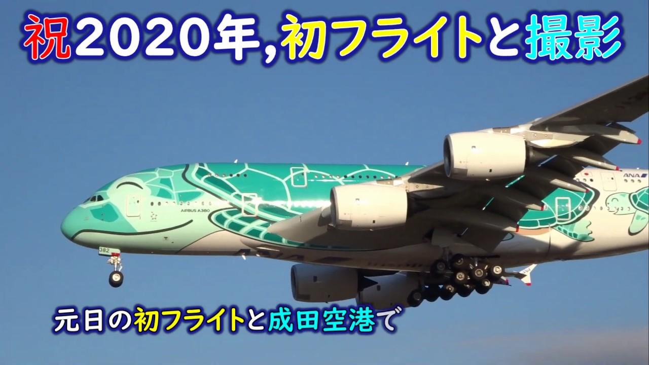 成田 空港 フライト 状況