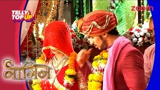 Sesha To Marry Ritik In 'Naagin' | Telly Top Up