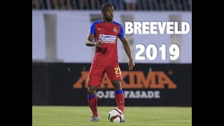 NICANDRO BREEVELD - Goals, Assists & Skills - 2019