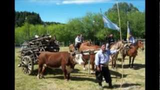 zamba natural - Abelardo de Epuyen por Cholo Barriga.wmv