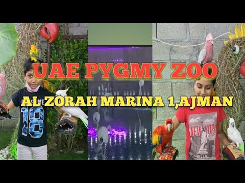 UAE PYGMY ZOO Ajman | AL ZORAH MARINA 1 |@Newdrops