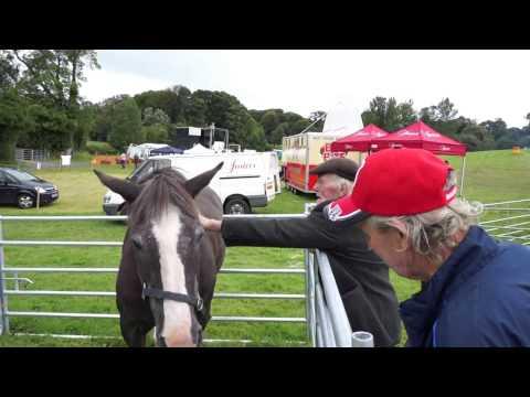Moynalty Steam Threshing Festival 2015