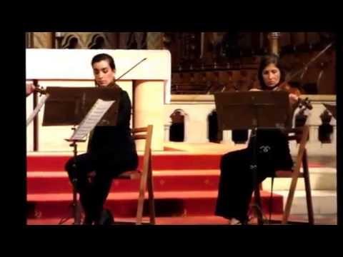 Duna String Orchestra / Tomaso Albinoni ADAGIO Matthias Church Budapest Hungary Live 2015 MP4