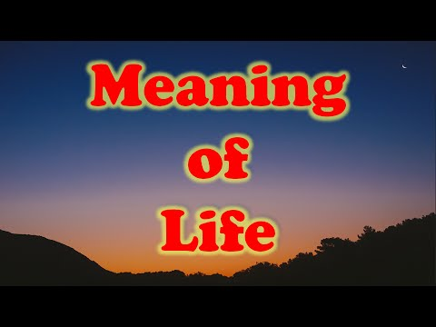 The Meaning Of Life Quotes YouTube Simple What Is The Meaning Of Life Quotes