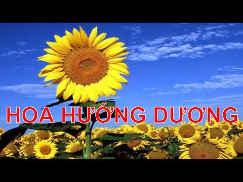 Bé tập nói tiếng Việt | em học đọc qua các loài hoa đẹp | Dạy trẻ thông minh sớm