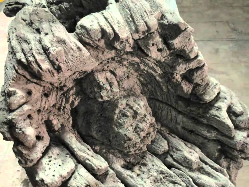 decorative concrete training tree vines & wood - youtube