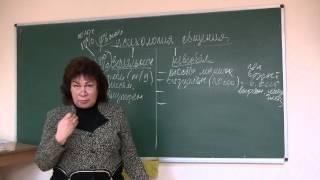 Невербальное общение. Психолог Наталья Кучеренко, лекция №06.(Лекция Натальи Кучеренко