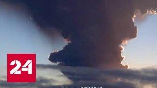Пеплопад на Камчатке: Шивелуч, Карымский и Ключевский угрожают самолетам