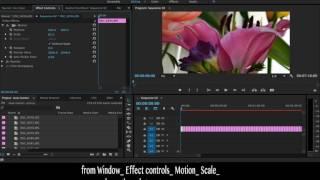 Adobe Premiere Pro CC StopMotion Oluşturmak için kolay Adımlar
