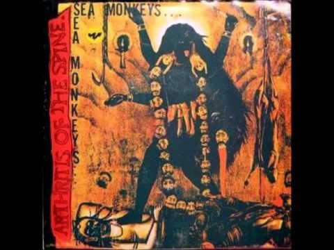 Sea Monkeys - Cardiac Arrest