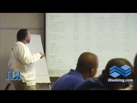 IBI Investment Banking Financial Modeling Johannesburg Testi