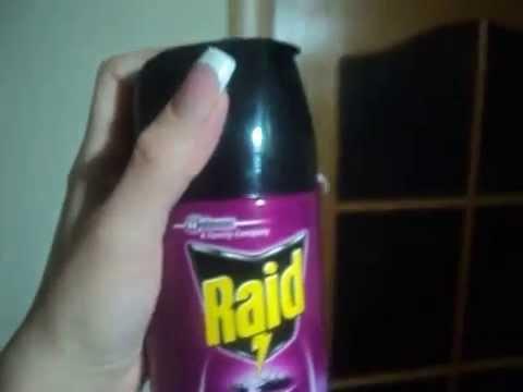 Аэрозоль Raid Против летающих и ползающих насекомых