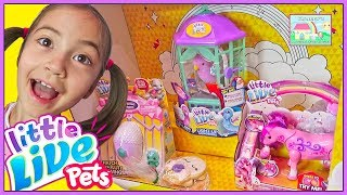 NEW Little Live Pets CUTE Dragon Egg and Dancing Unicorn Horse toy review