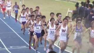 若松儀裕 光延誠  半澤黎斗 / 2017.4.23日体大長距離競技会 男子5000m 26組