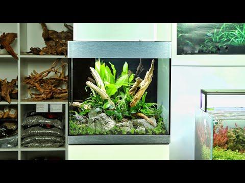Aquascaping at Aquarium Gardens - OASE Highline 125 with Tropica Aquarium Plants