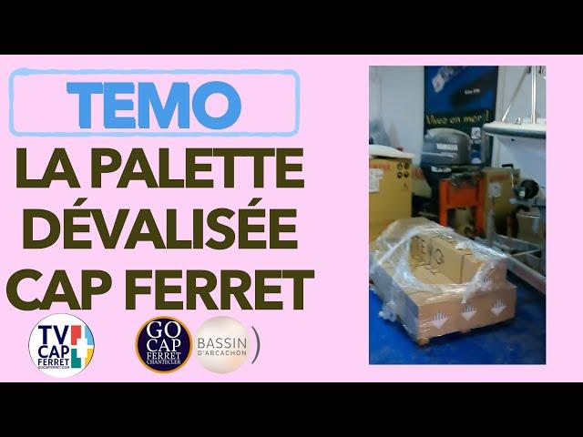 TEMO Moteur électrique  04 : La Palette de TEMO dévalisée au Cap Ferret Bassin d'Arcachon
