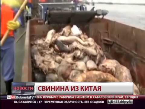 Мясо из Китая. Новости. GuberniaTV
