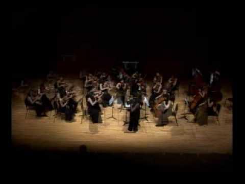 Bizet -  Carmen Suite  (Prelude & Aragonaise) - Hyup strings