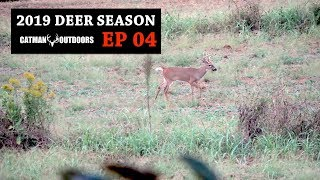 setting-up-on-public-land-field-bucks-and-a-stud-in-the-hardwoods-2019-deer-season-ep-04