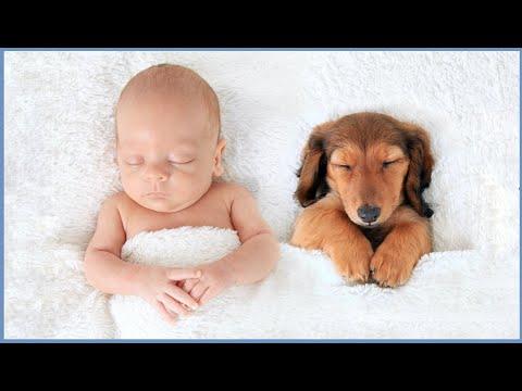 Douce Pluie Apaisante pour Endormir Bébé 💦 Thérapie par les Sons de la Nature pour le Sommeil