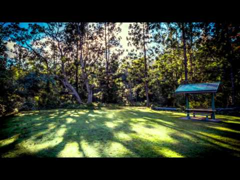 Sound Of Nature -Richmond Range national park (Australia)