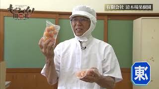 有限会社清木場果樹園 thumbnail