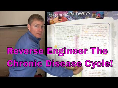 Reverse Engineer the Chronic Disease Cycle!