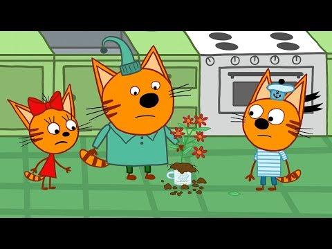Три кота | Серия 112 | Мамин цветок