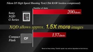 Sony XQD 64GB G Series GARANSI RESMI