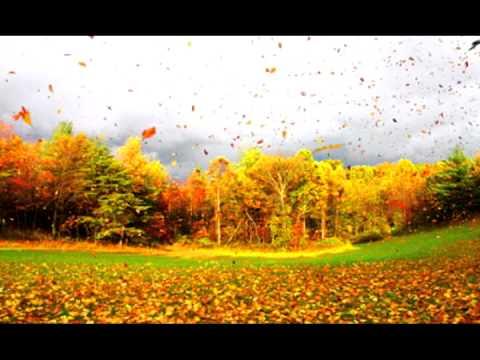Wind sound effect 1 - gentle breeze - YouTube