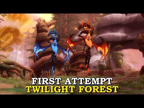 First Attempt Twilight Forest (Party mode, Solo) Aura Kingdom