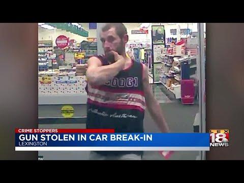 Gun Stolen In Car Break-In