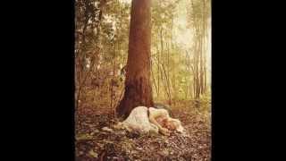 Lizz Wright - Dreaming wide awake lyrics