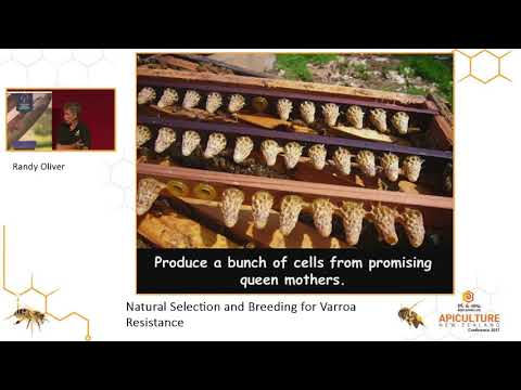 Apiculture New Zealand - Randy Oliver Workshop 3
