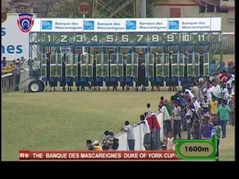 Coupe d'Or 2012 - Meeting 32 - Race 6 - TANDRAGEE - R. Joorawon - iDates.mu - Turf Mauritius