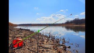 ТОЛЬКО ЗАКИНУЛ И НАЧАЛОСЬ КАРАСЬ СУДАК ОКУНЬ рыбалка весной на карася и судака