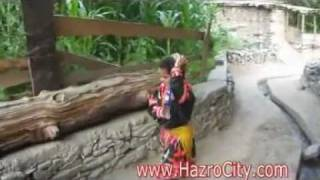 Bamborati (Kalash Valley) Chitral, a view on their culture
