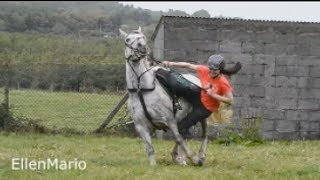 Horse Falls Compilation  - Best Bad Horse and Pony Falls - Epic Equestrian Fails, Thrills and Spills