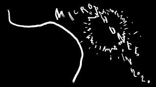 the Microphones - Microphones in 2020