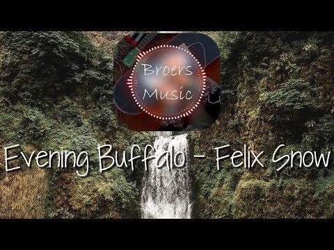 🎧 EVENING BUFFALO - FELIX SNOW [Broers Music]