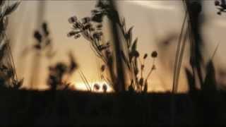 from album 「汽笛がきこえる街」 1980 -unofficial video.