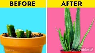 16 Minute CRAFTS! Smart and easy HACKS WITH PLANTS AND FLOWERS