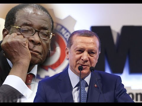 Wararkii ugu Danbeeyey Zimbabwe Maxaa Kadhacay ? Xog Buuxda & Warar kale oo Xiiso Leh