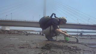 江戸前のシジミはやっぱり旨い! 多摩川河口で潮干狩り&テナガエビ